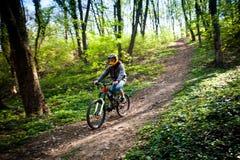 人乘驾登山车通过森林 免版税库存图片