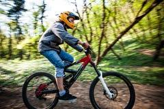 人乘驾登山车通过森林 免版税库存照片