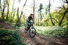 人乘驾登山车通过森林 库存照片