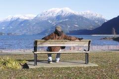 人享受优美的风景 免版税库存照片