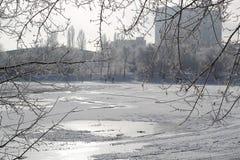 人们充斥滑冰场,因此孩子能滑冰和打曲棍球在一个冷和多雪的冬日 图库摄影