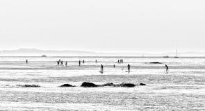 人们冲浪沿圣迭戈加利福尼亚美国海岸线的一口板  在一个minimalistic样式的一张黑白照片 库存图片