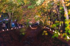 人们参观富士Kawaguchiko秋叶节日 图库摄影
