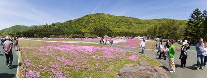 人们和游人从东京和其他城市或者国际性组织走向Mt 富士 免版税库存照片