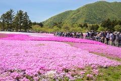 人们和游人从东京和其他城市或者国际性组织走向Mt 富士 库存图片