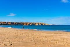 人们和狗在美丽如画的海滩环境美化与峭壁 免版税库存照片