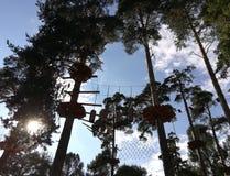 人们在一个绳索公园通过一个障碍桩在森林里 库存照片