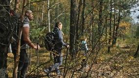 人们在山小河附近走 家庭旅行 由山,河,小河的人环境 父项和孩子 股票视频