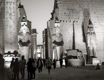 人们在晚上在卢克索神庙 库存图片