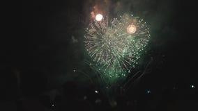 人们在晚上看起来美丽的烟花在度假 股票视频