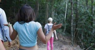 人们在森林,游人里编组走谈话在森林混合一起步行种族的朋友的Hile Trekkking路线 股票视频