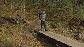 人们在河的一个木桥走 家庭旅行 由山,河,小河的人环境 父项 股票视频
