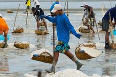 人们在盐农场运载盐在Huahin,泰国 库存照片