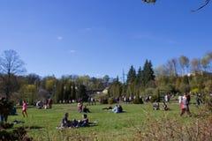 人们在草放松 图库摄影