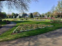 人们在Kelvingrove公园在格拉斯哥 免版税图库摄影