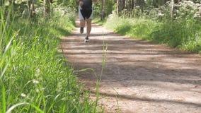 人们带领一种健康生活方式 他们在公园跑并且骑一辆自行车 在一个夏日 影视素材