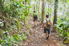 人们步行与背包的,迁徙的密林,小组游人背包徒步旅行者 库存图片