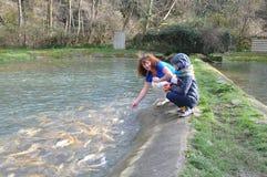 人们由有鳟鱼的池塘坐 库存照片