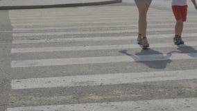 人们穿过在一条行人交叉路的路 股票视频