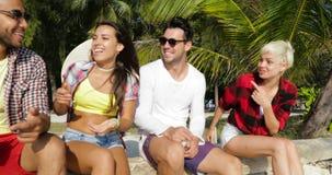 人们编组坐户外在棕榈树、愉快的微笑的混合种族人和妇女朋友下的谈的通信 影视素材