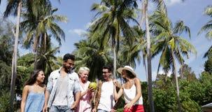 人们编组谈话举行椰子步行户外通过棕榈树、愉快的微笑的混合种族男人和妇女 股票视频