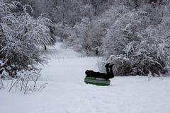 人们获得乐趣在一个多雪的森林在岔开雪倾斜的冬天在小圆面包 管材在一个多雪的森林里 免版税图库摄影