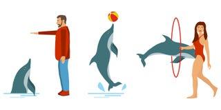 人们训练海豚 海豚展示 人们使用与海豚 库存例证