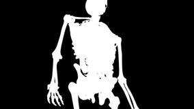 人体和内脏在圈自转 皇族释放例证