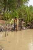 年轻人使用一把犁耙抓鱼 免版税库存图片