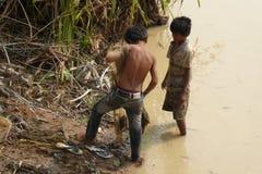 年轻人使用一把犁耙抓鱼 库存图片