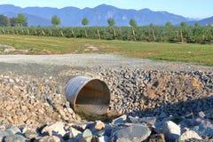 人做了庄稼的灌溉 库存照片