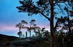 人剪影在森林里 免版税库存图片
