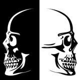 人力图象头骨向量 库存照片