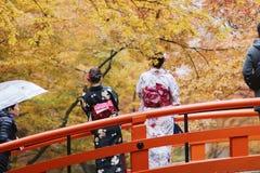 人参观秋天庭院在京都 免版税库存图片