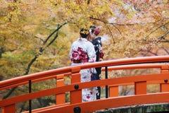 人参观秋天庭院在京都 库存照片
