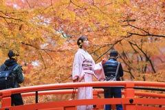 人参观秋天庭院在京都 库存图片