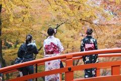 人参观秋天庭院在京都 图库摄影