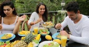 人吃健康素食食物,朋友通信的小组谈话在表上坐热带大阳台 股票录像