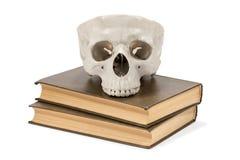 人和书的头骨 免版税图库摄影
