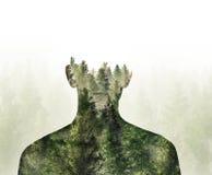 人和常青树森林两次曝光  免版税库存照片