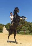 人和抚养公马 免版税库存照片