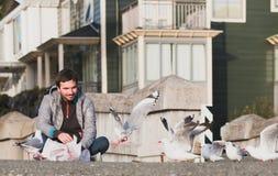 年轻人和海鸥 库存图片