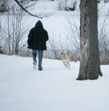 人和狗享受在雪的步行 库存照片