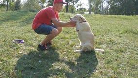 年轻人和狗使用室外在自然 拉布拉多或金毛猎犬和他的男性所有者一起花费时间在 免版税库存图片