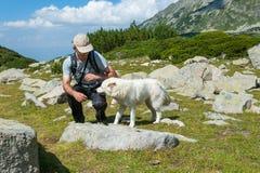 人和狗在山Pirin 免版税图库摄影
