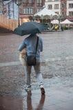 人和狗画象在胳膊有伞的在大卵石主要地方在城市 免版税库存图片