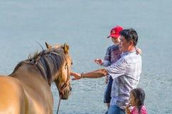人和男孩轻拍马 免版税库存照片