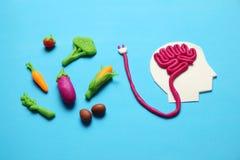 人和素食食物彩色塑泥形象  头脑的,能量充电食物  健康生活方式、解毒和抗氧剂 库存照片