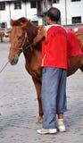 人和马 免版税库存照片