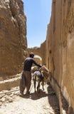人和驴在Kharanagh村庄,伊朗 库存图片